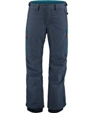 Oneill Hommes construisent des pantalons de ski